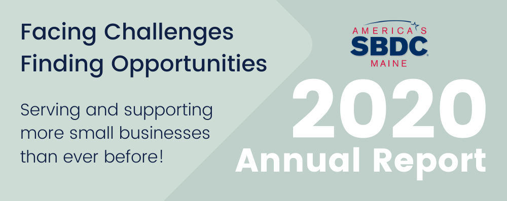 2020 Annual Report Results